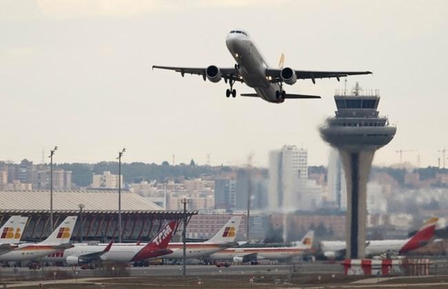 Прорыв дикого кабана на территорию аэропорта задержал 2 рейса