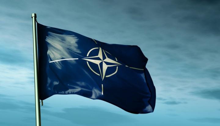 Эксперт: европейские страны не хотят принимать в НАТО Украину