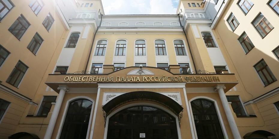 Общественная палата обнаружила около 100 фейков о несогласованных акциях