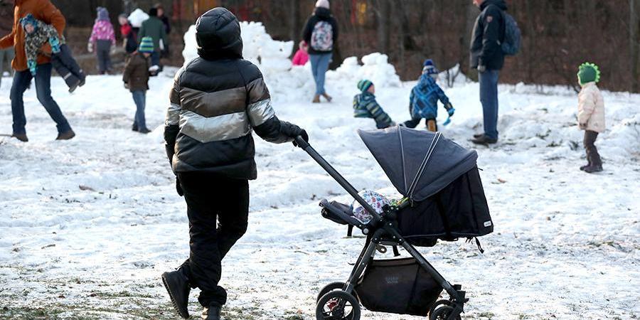 Собянин упростил порядок получения пособий на детей