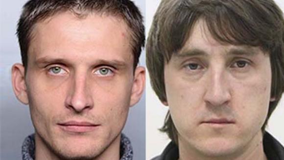 Путин: Обвинения журналистов LifeNews в провозе оружия  – бред и полная чушь