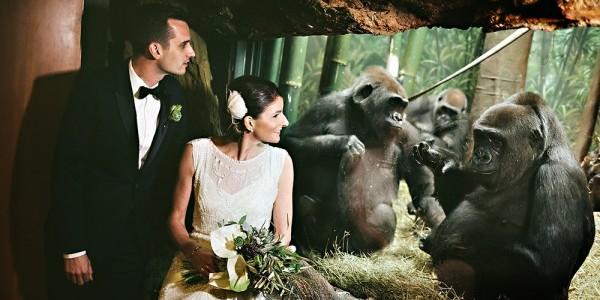 Москвичам разрешили жениться в зоопарке