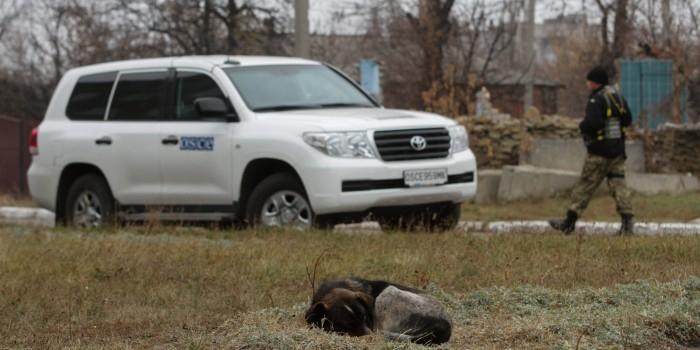 Под Луганском подорвался автомобиль ОБСЕ, погиб американец