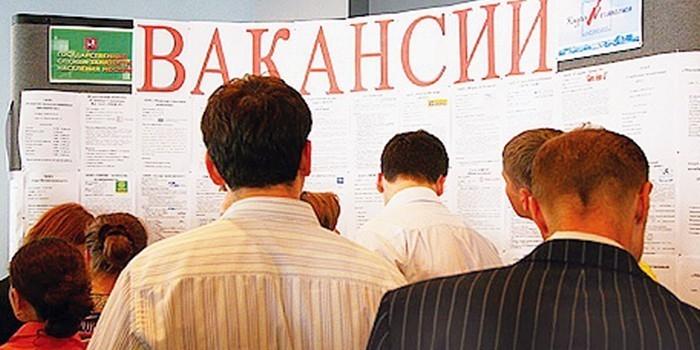 Госорганы проверят 15 млн безработных россиян на тунеядство