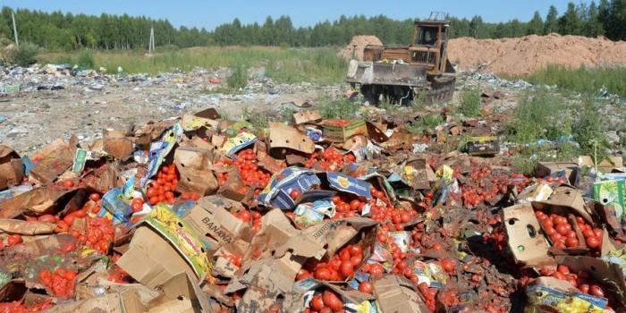 В Госдуме не согласились раздавать санкционные продукты нуждающимся