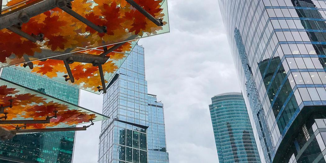 Рост на 17%: московская экономика восстанавливается после эпидемии