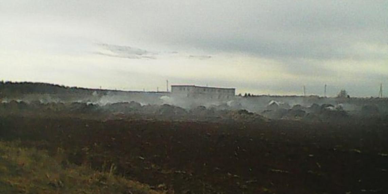 В Пермском крае школьницы сожгли ферму, снимая ролик для TikTok