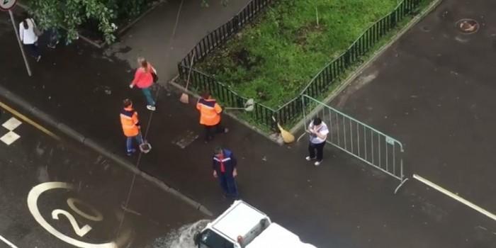 Видео дня: коммунальщики заботливо поливают газон водой из лужи