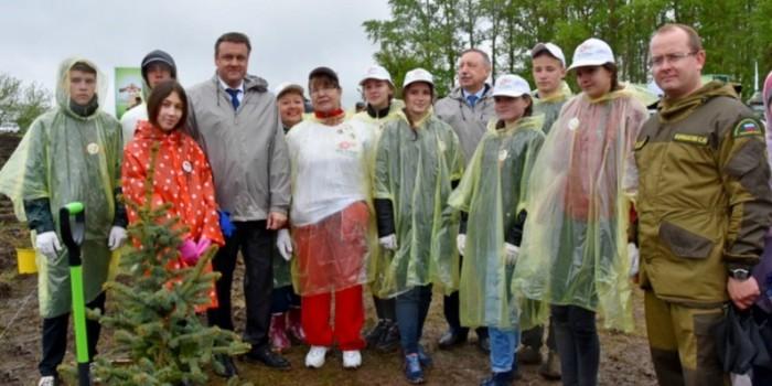 Врио губернатора Рязанской области посадил сосны и ели на берегу Оки