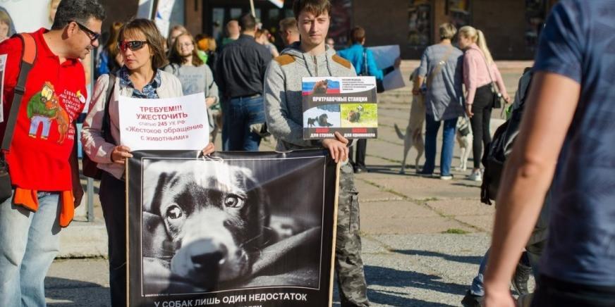 В Омске прошел митинг зоозащитников