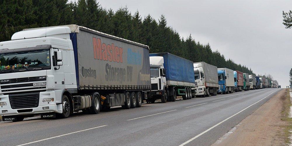 Россельхознадзор попросил ФСБ, ФНС и Минтранс остановить незаконные поставки из Белоруссии