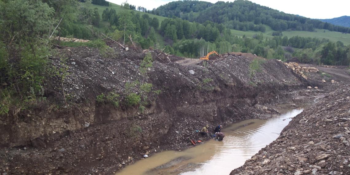 Всемирный фонд дикой природы призвал к ограничению золотодобычи в России