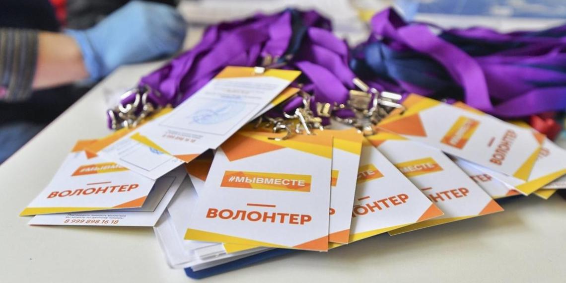 Проект #СвоихНеБросаем провел акцию в Домодедово ко Дню Конституции России