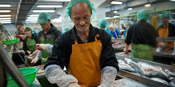 После обращения к Путину работникам сахалинского рыбокомбината погасили долги по зарплате