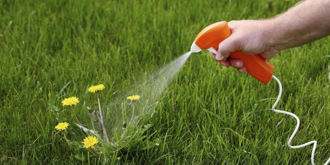 Производителю популярного пестицида Roundup придется выплатить $11 млрд за онкологию у фермеров