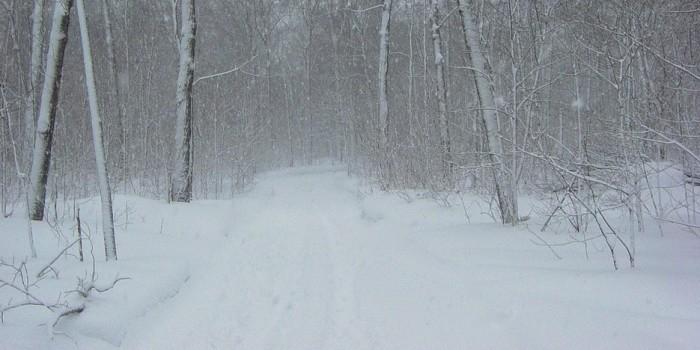 На Украине насмерть замерз пограничник