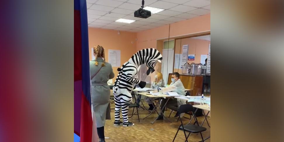 Первый день выборов принес массу курьезов на участках