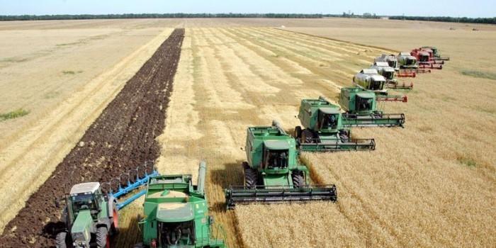 Киев пожалуется ВТО на запрет Россией импорта украинской продукции