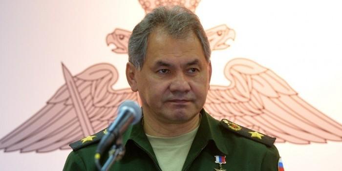 Шойгу заявил о предотвращении удара НАТО по Сирии