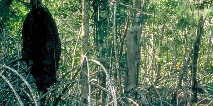 Пятничная головоломка: фотограф прячет голых женщин на своих пейзажных фото