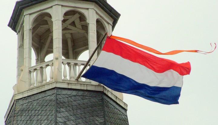 Торговля между Россией и Нидерландами осталась на том же уровне