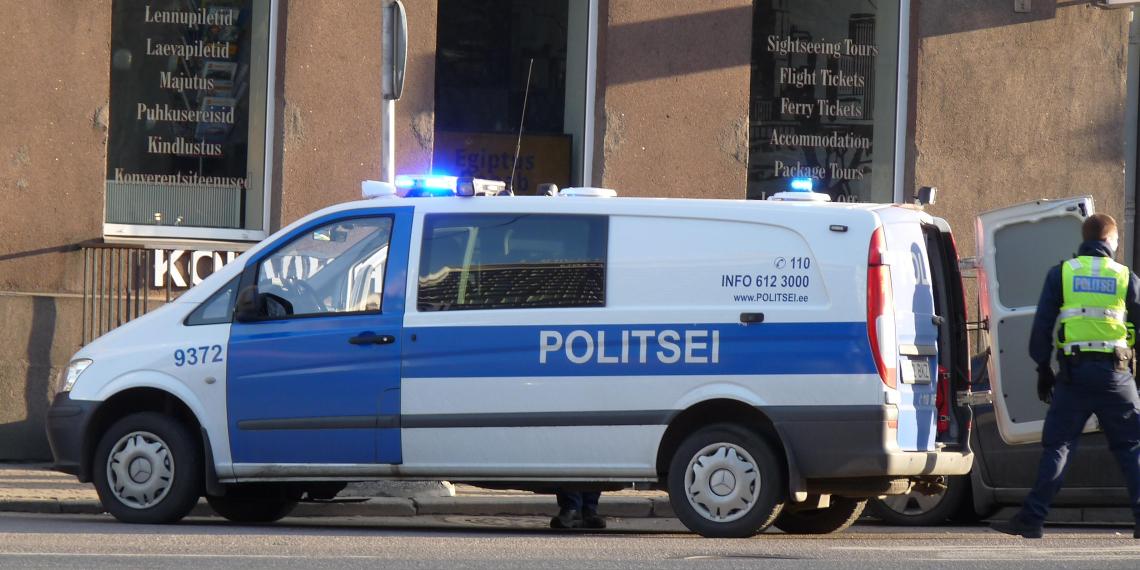 В Эстонии задержан основатель международной неонацистской группировки Feuerkrieg Division. Им оказался 13-летний школьник