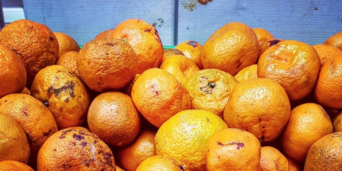 «Кавалер» накормил учеников 419 лицея тухлячком