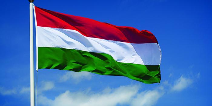 Венгрия объявила дипломатическую войну Украине