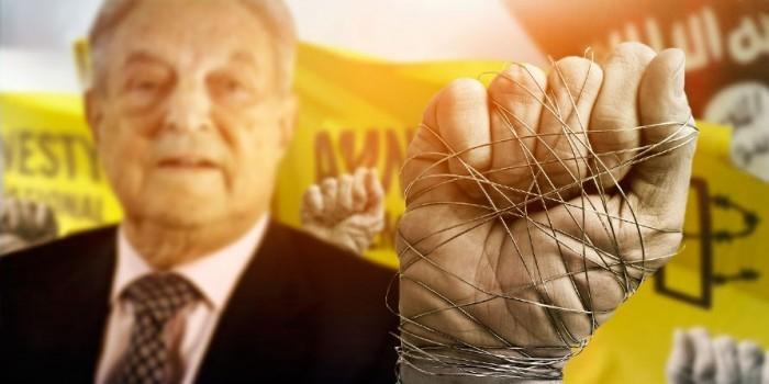 Разжигатели войны и защитники террористов: что известно о работе Amnesty International