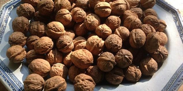 Китаец 25 лет колол грецкие орехи с помощью гранаты