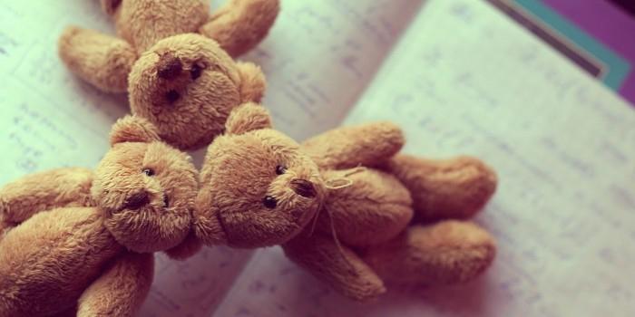 Петрозаводчанин получил 3 года тюрьмы за кражу плюшевых медведей