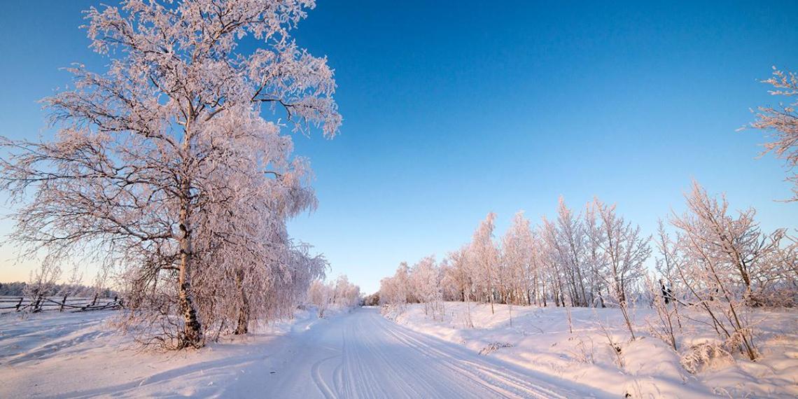 Житель Якутии ехал на похороны замерзшего родственника и сам замерз