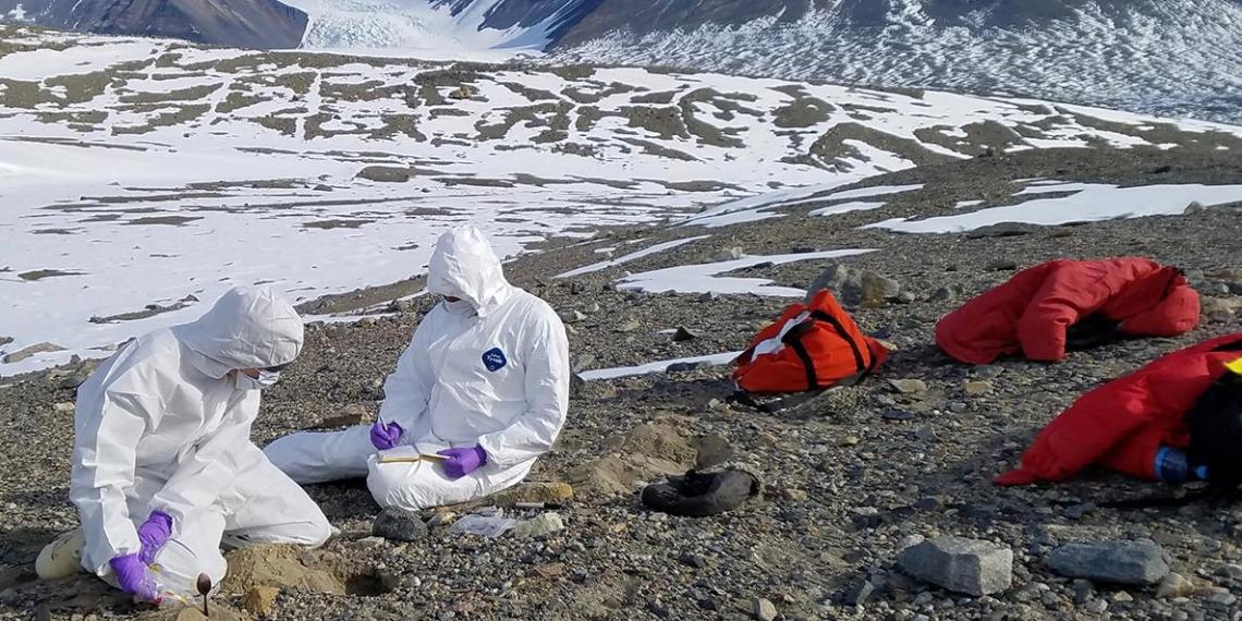 Ученые нашли в древних льдах неизвестные науке 33 вируса возрастом 15 тысяч лет