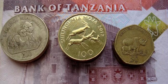 Киев планирует печатать танзанийский шиллинг