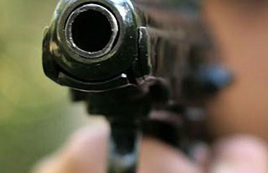 Правительство РФ одобрило ношение оружия, а Совет Федерации критикует
