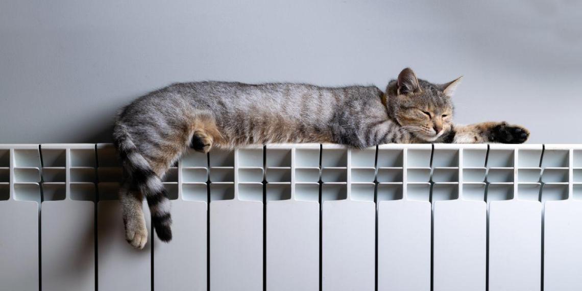 Отопление включили в 99% домов и соцучреждений Москвы