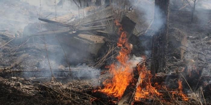 Под Иркутском жители сгоревшего села откопали алкоголь и выпили его