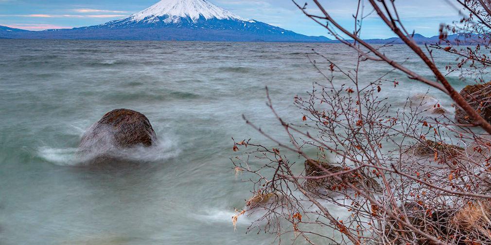 Биологи выяснили, откуда на Камчатке появились токсичные водоросли
