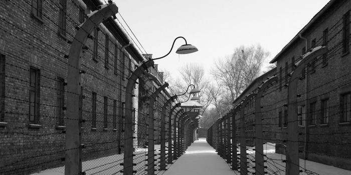 93-летнего охранника Освенцима будут судить в Германии