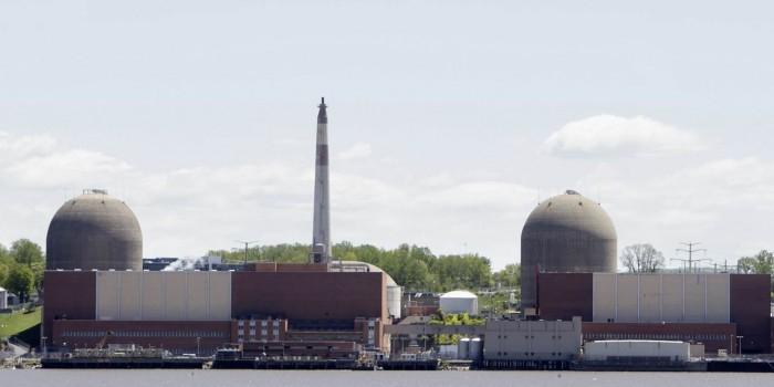 Птичий помет стал причиной остановки ядерного реактора в США