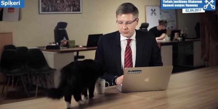 Кот сорвал прямой эфир с мэром Риги и выпил его чай