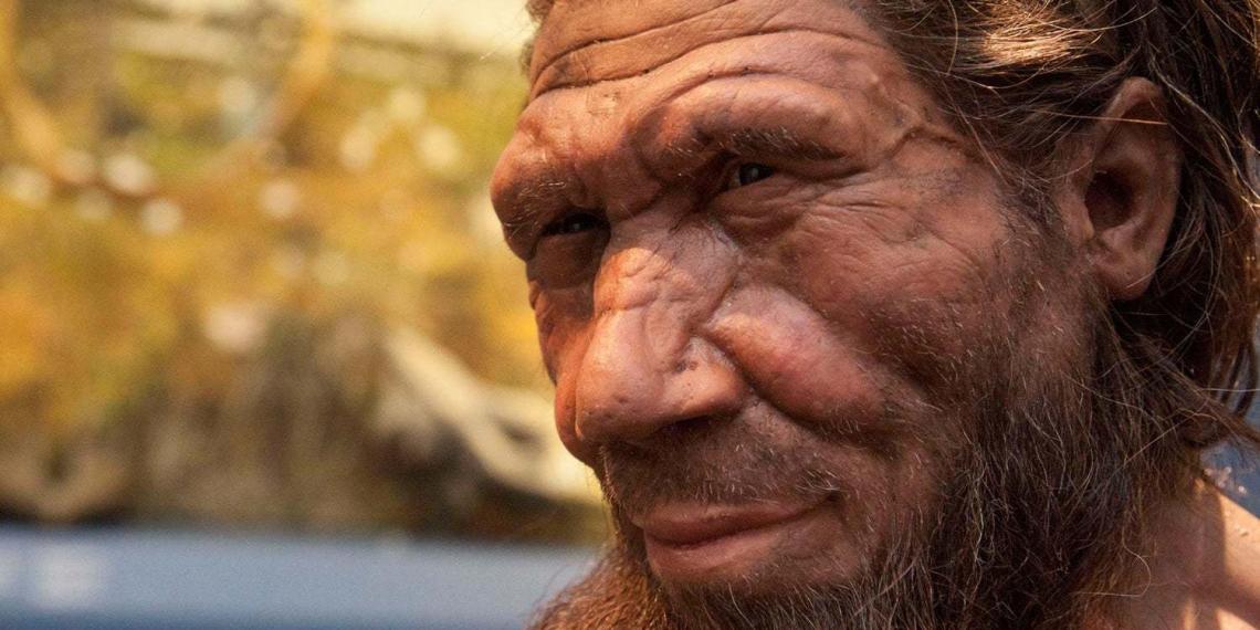 Суперкомпьютер раскрыл новую причину исчезновения неандертальцев