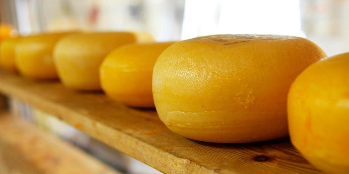 Российские сыровары не захотели возвращения итальянского пармезана