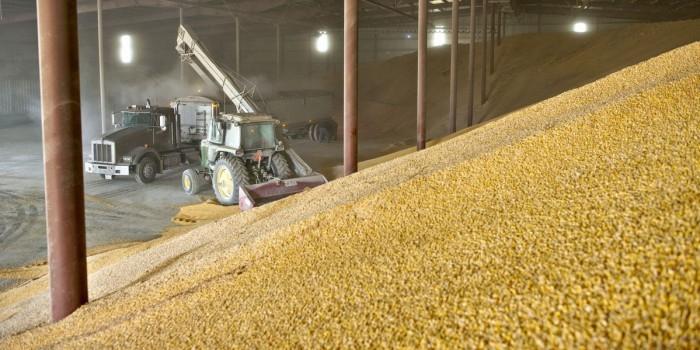 Эксперты повысили прогноз по сбору зерна, отметив падение цен