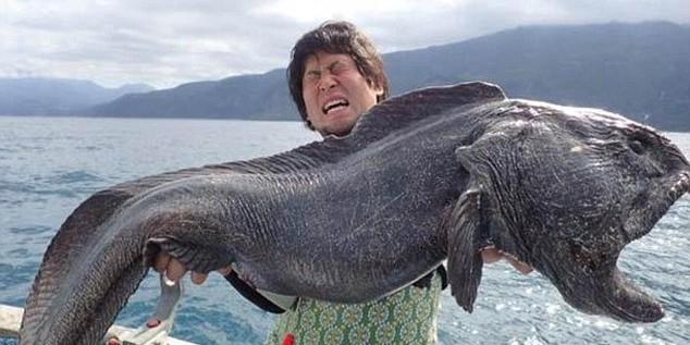 Японский рыбак выловил чудовище у берегов Фукусимы