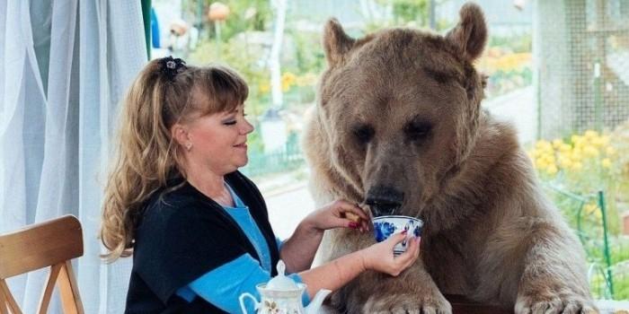 Москвичам запретят растить дома медведей