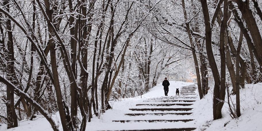 """Синоптики напугали россиян """"холодным прогнозом"""" на зиму"""