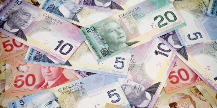 Канадка потребовала с сына денег за неблагодарное поведение