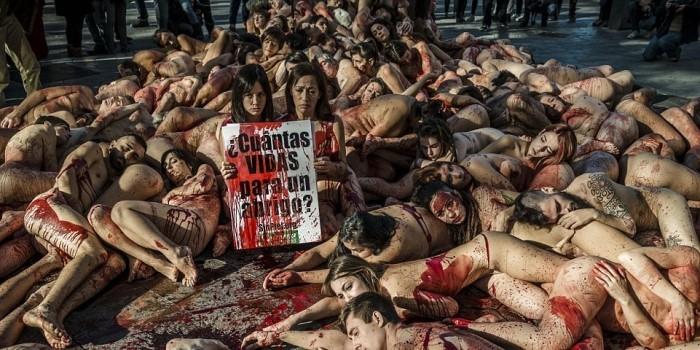 Десятки голых испанцев обмазались кровью ради животных