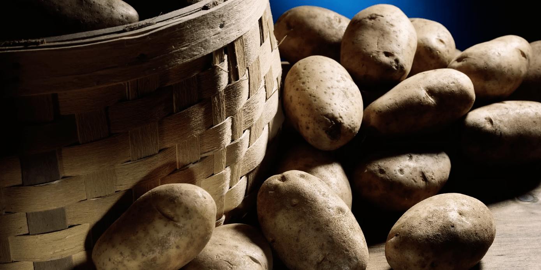 Россия попросит Белоруссию помочь картофелем